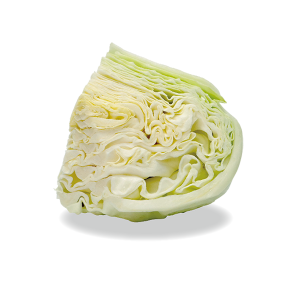 kyokuyo-cabbage-quarter-01