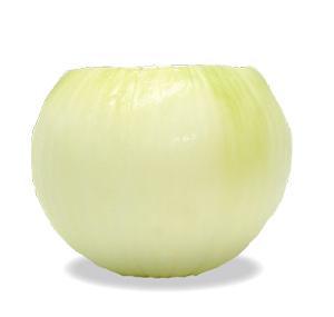 kyokuyo-onion01-300x2831210