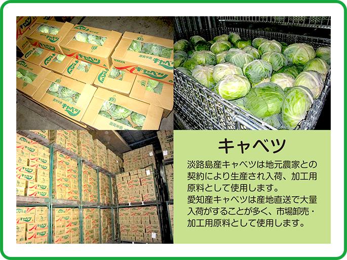 淡路島産キャベツは地元農家との契約により生産され入荷、加工用原料として使用します。