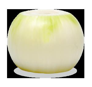 kyokuyo-onion-deepcut-01